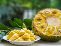 A picture of jackfruit.
