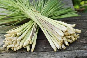 Two bundles of lemongrass bound together with rubber bands.