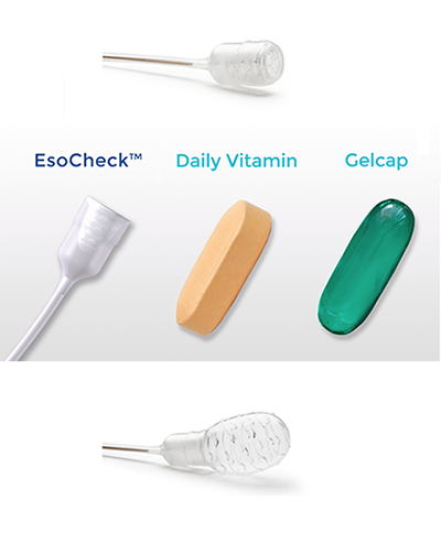 Size comparison of EsoCheck (when swallowed then inflated) with a vitamin capsule.