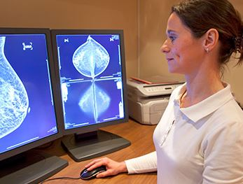 A radiology technician reviewing a mammogram as seen on a computer generated image..