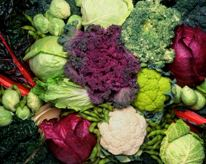 An image of cruciferous vegetables