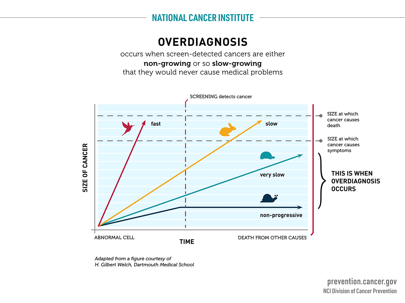 Overdiagnosis occurs when screen-detected cancers are either non-growing or so slow-growing that they would never cause medical problems.