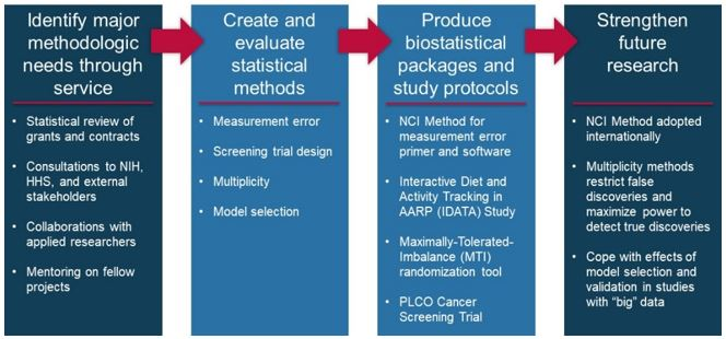 A four step biometry methodolgy: (1) Identify major methodologic needs through service, (2) create and evaluate statistical methods, (3) produce boistatistical packages and study protocols, (4) strengthen future research.