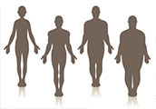 Line drawings of human figures with various builds, from slender to obese.